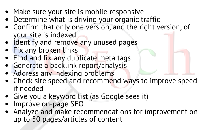 SEO Audit items checked